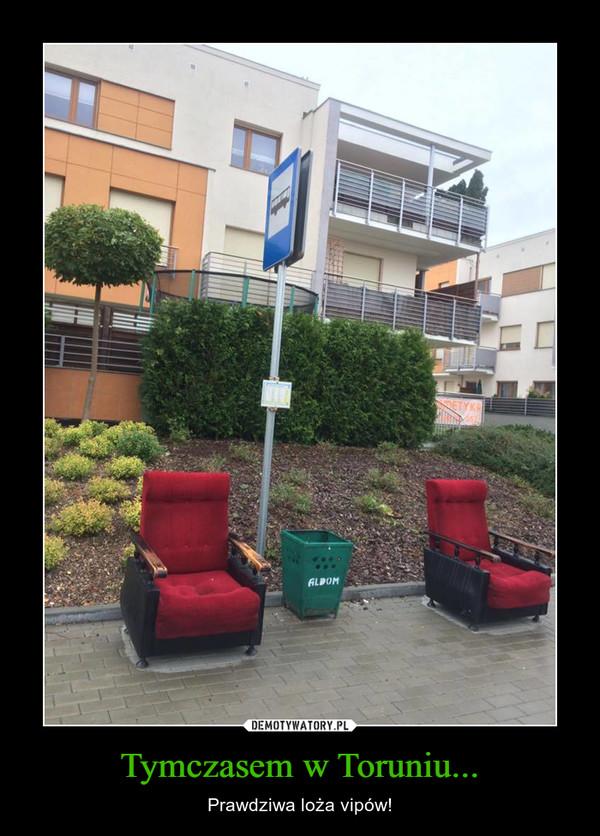 Tymczasem w Toruniu... – Prawdziwa loża vipów!