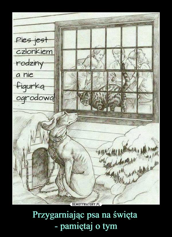 Przygarniając psa na święta - pamiętaj o tym –