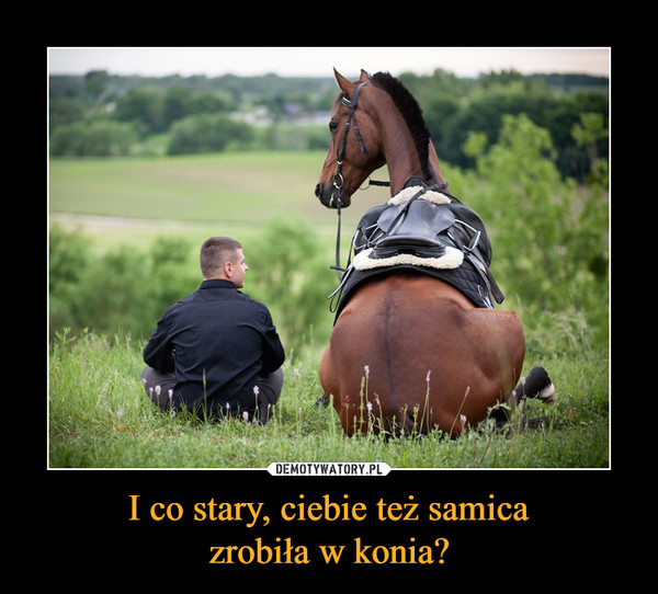 I co stary, ciebie też samicazrobiła w konia? –