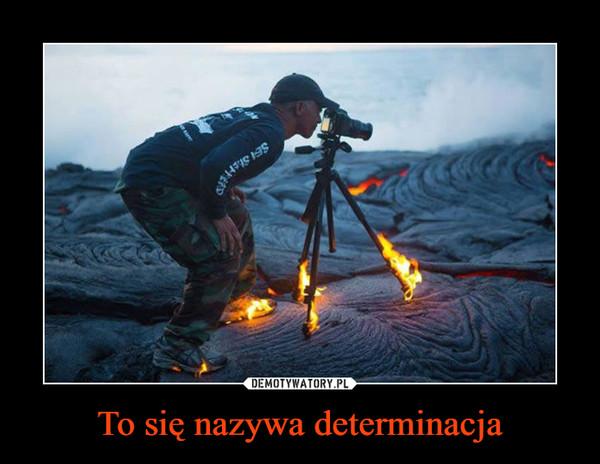 To się nazywa determinacja –