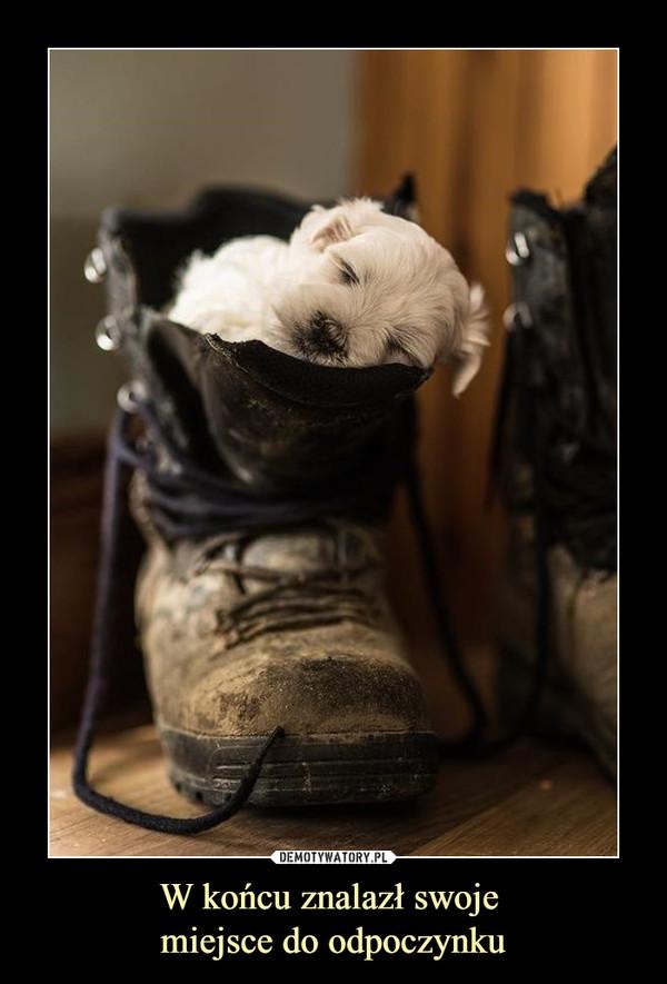 W końcu znalazł swoje miejsce do odpoczynku –