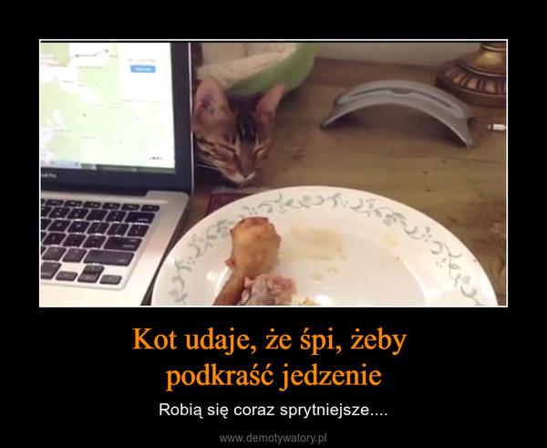 Kot udaje, że śpi, żeby podkraść jedzenie – Robią się coraz sprytniejsze....