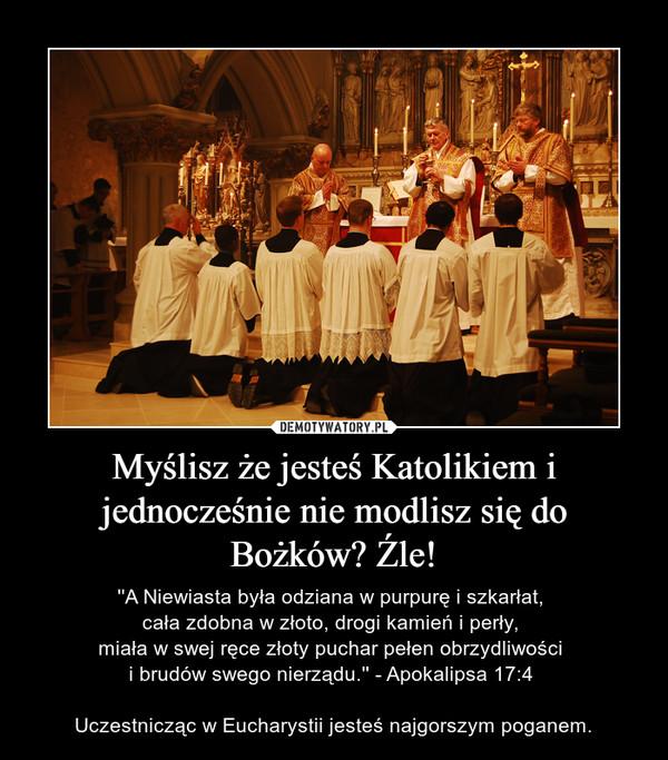 Myślisz że jesteś Katolikiem i jednocześnie nie modlisz się do Bożków? Źle! – ''A Niewiasta była odziana w purpurę i szkarłat, cała zdobna w złoto, drogi kamień i perły, miała w swej ręce złoty puchar pełen obrzydliwości i brudów swego nierządu.'' - Apokalipsa 17:4 Uczestnicząc w Eucharystii jesteś najgorszym poganem.
