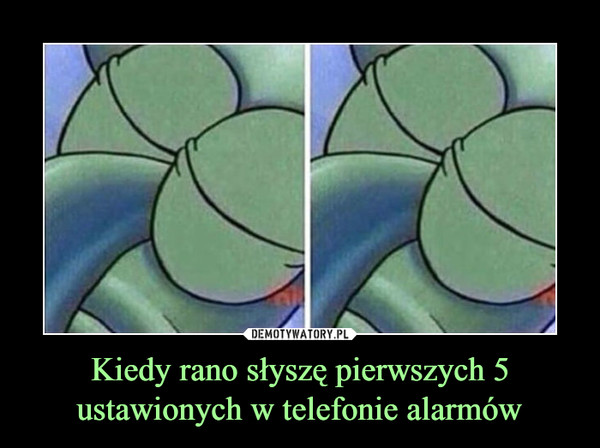 Kiedy rano słyszę pierwszych 5 ustawionych w telefonie alarmów –