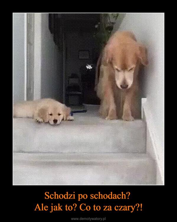 Schodzi po schodach? Ale jak to? Co to za czary?! –