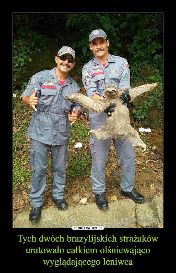Tych dwóch brazylijskich strażaków uratowało całkiem olśniewająco wyglądającego leniwca –