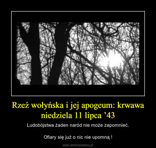 Rzeź wołyńska i jej apogeum: krwawa niedziela 11 lipca '43 – Ludobójstwa żaden naród nie może zapomnieć.Ofiary się już o nic nie upomną !