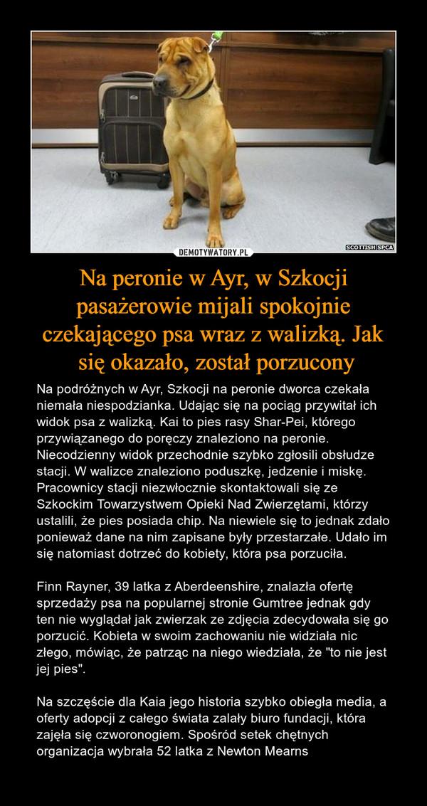"""Na peronie w Ayr, w Szkocji pasażerowie mijali spokojnie czekającego psa wraz z walizką. Jak się okazało, został porzucony – Na podróżnych w Ayr, Szkocji na peronie dworca czekała niemała niespodzianka. Udając się na pociąg przywitał ich widok psa z walizką. Kai to pies rasy Shar-Pei, którego przywiązanego do poręczy znaleziono na peronie.Niecodzienny widok przechodnie szybko zgłosili obsłudze stacji. W walizce znaleziono poduszkę, jedzenie i miskę. Pracownicy stacji niezwłocznie skontaktowali się ze Szkockim Towarzystwem Opieki Nad Zwierzętami, którzy ustalili, że pies posiada chip. Na niewiele się to jednak zdało ponieważ dane na nim zapisane były przestarzałe. Udało im się natomiast dotrzeć do kobiety, która psa porzuciła.Finn Rayner, 39 latka z Aberdeenshire, znalazła ofertę sprzedaży psa na popularnej stronie Gumtree jednak gdy ten nie wyglądał jak zwierzak ze zdjęcia zdecydowała się go porzucić. Kobieta w swoim zachowaniu nie widziała nic złego, mówiąc, że patrząc na niego wiedziała, że """"to nie jest jej pies"""". Na szczęście dla Kaia jego historia szybko obiegła media, a oferty adopcji z całego świata zalały biuro fundacji, która zajęła się czworonogiem. Spośród setek chętnych organizacja wybrała 52 latka z Newton Mearns"""