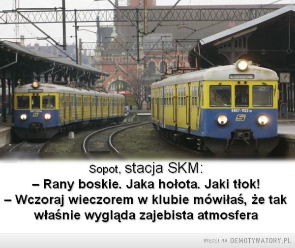 Punkt widzenia –  Sopot, stacja SKM:- Rany boskie. Jaka hołota. Jaki tłok!- Wczoraj wieczorem w klubie mówiłaś, że takwłaśnie wygląda zajebista atmosfera