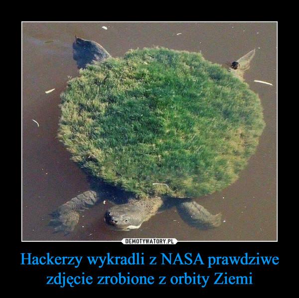 Hackerzy wykradli z NASA prawdziwe zdjęcie zrobione z orbity Ziemi –