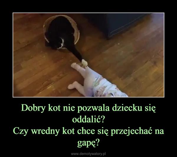 Dobry kot nie pozwala dziecku się oddalić?Czy wredny kot chce się przejechać na gapę? –