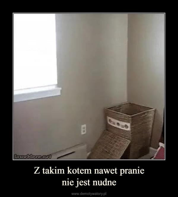 Z takim kotem nawet pranienie jest nudne –