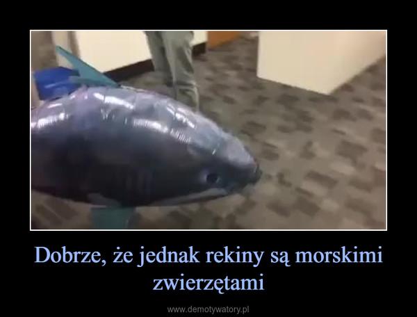 Dobrze, że jednak rekiny są morskimi zwierzętami –