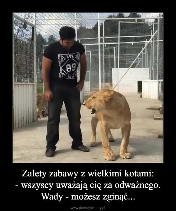 Zalety zabawy z wielkimi kotami:- wszyscy uważają cię za odważnego.Wady - możesz zginąć... –