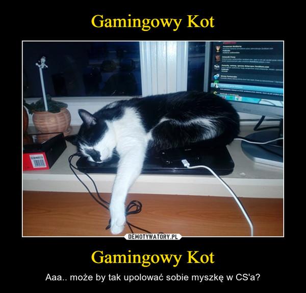 Gamingowy Kot – Aaa.. może by tak upolować sobie myszkę w CS'a?