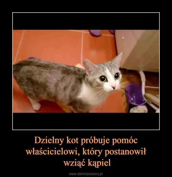 Dzielny kot próbuje pomóc właścicielowi, który postanowił wziąć kąpiel –