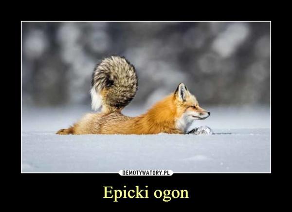 Epicki ogon –