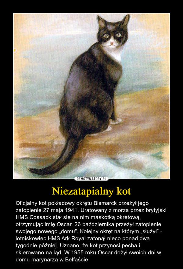 """Niezatapialny kot – Oficjalny kot pokładowy okrętu Bismarck przeżył jego zatopienie 27 maja 1941. Uratowany z morza przez brytyjski HMS Cossack stał się na nim maskotką okrętową, otrzymując imię Oscar. 26 października przeżył zatopienie swojego nowego """"domu"""". Kolejny okręt na którym """"służył"""" - lotniskowiec HMS Ark Royal zatonął nieco ponad dwa tygodnie później. Uznano, że kot przynosi pecha i skierowano na ląd. W 1955 roku Oscar dożył swoich dni w domu marynarza w Belfaście"""