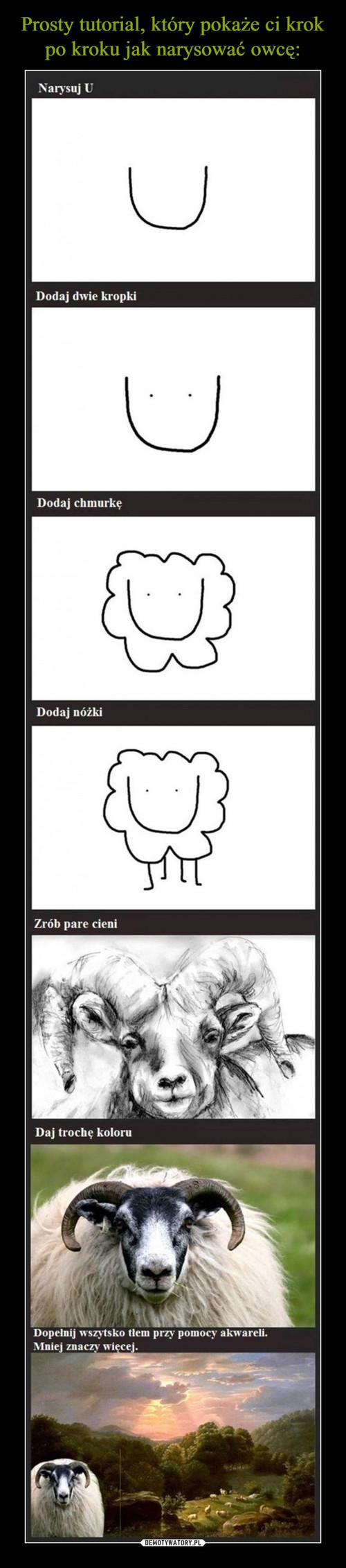 Prosty tutorial, który pokaże ci krok po kroku jak narysować owcę: