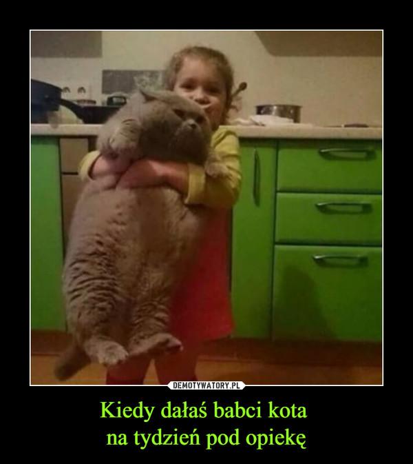 Kiedy dałaś babci kota na tydzień pod opiekę –