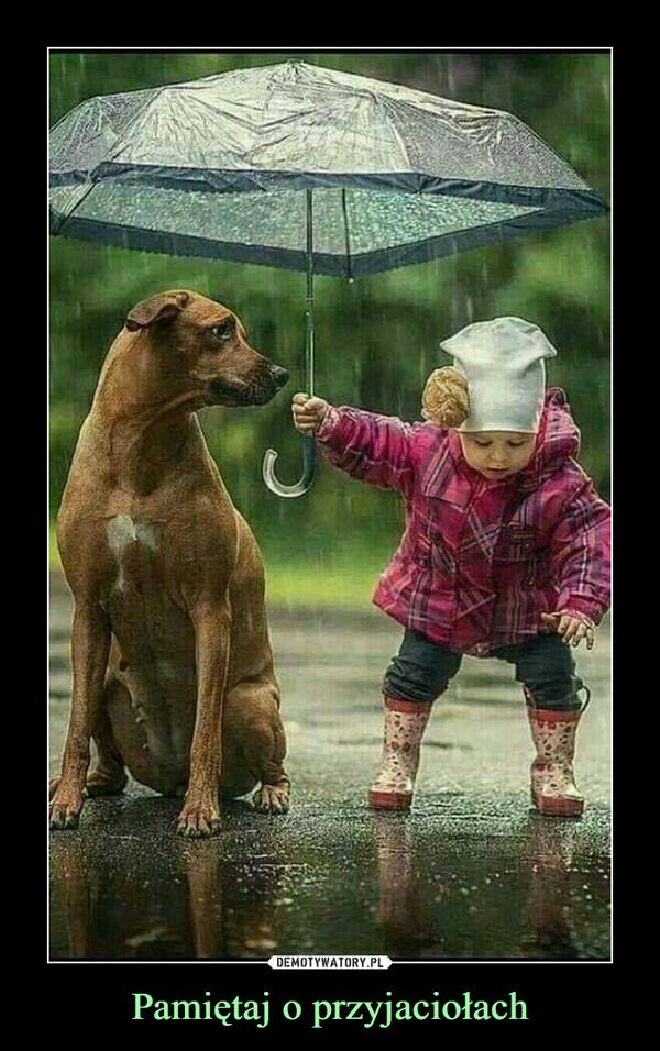 Pamiętaj o przyjaciołach –