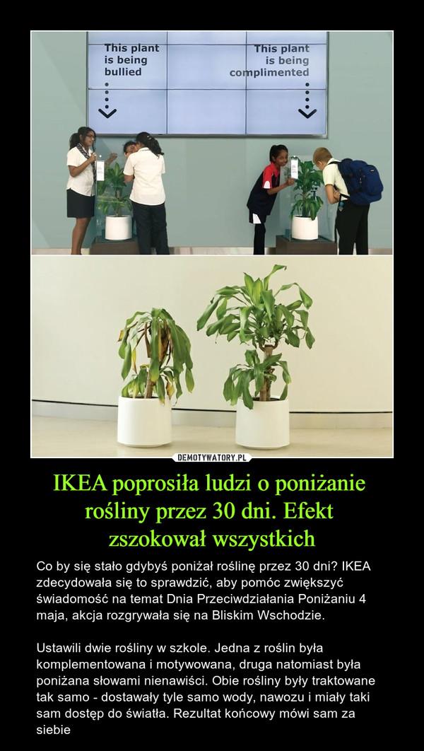 IKEA poprosiła ludzi o poniżanie rośliny przez 30 dni. Efekt zszokował wszystkich – Co by się stało gdybyś poniżał roślinę przez 30 dni? IKEA zdecydowała się to sprawdzić, aby pomóc zwiększyć świadomość na temat Dnia Przeciwdziałania Poniżaniu 4 maja, akcja rozgrywała się na Bliskim Wschodzie.Ustawili dwie rośliny w szkole. Jedna z roślin była komplementowana i motywowana, druga natomiast była poniżana słowami nienawiści. Obie rośliny były traktowane tak samo - dostawały tyle samo wody, nawozu i miały taki sam dostęp do światła. Rezultat końcowy mówi sam za siebie