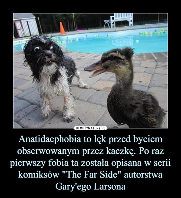 """Anatidaephobia to lęk przed byciem obserwowanym przez kaczkę. Po raz pierwszy fobia ta została opisana w serii komiksów """"The Far Side"""" autorstwa Gary'ego Larsona –"""