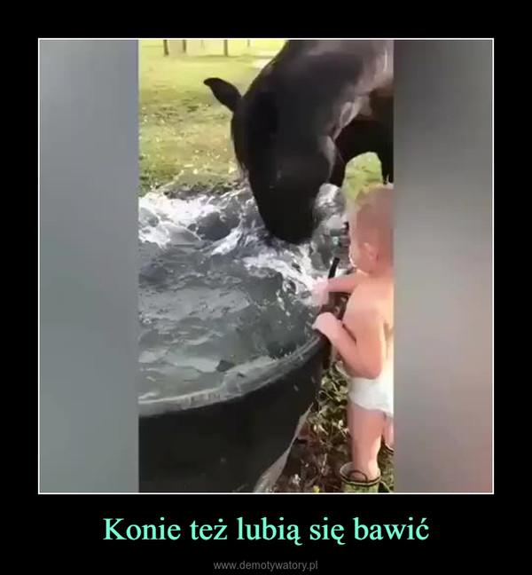 Konie też lubią się bawić –