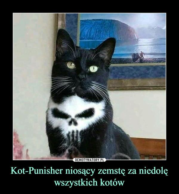 Kot-Punisher niosący zemstę za niedolę wszystkich kotów –