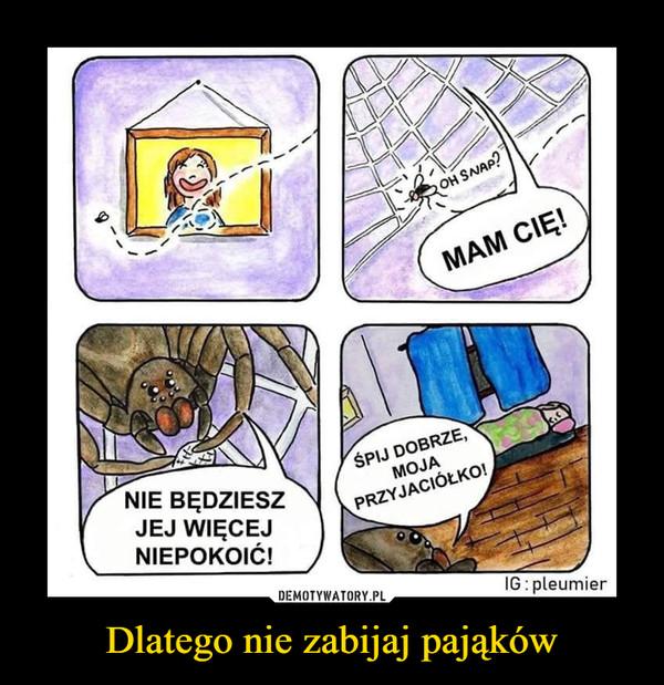 Dlatego nie zabijaj pająków –  Mam cię! Nie będziesz jej więcej niepokoić! Śpij dobrze, moja przyjaciółko