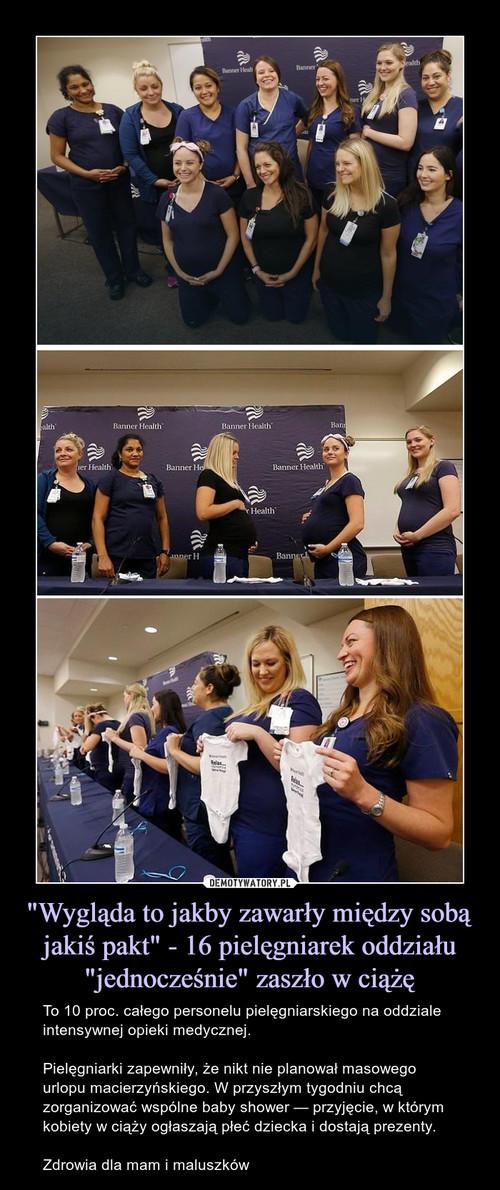 """""""Wygląda to jakby zawarły między sobą jakiś pakt"""" - 16 pielęgniarek oddziału """"jednocześnie"""" zaszło w ciążę"""