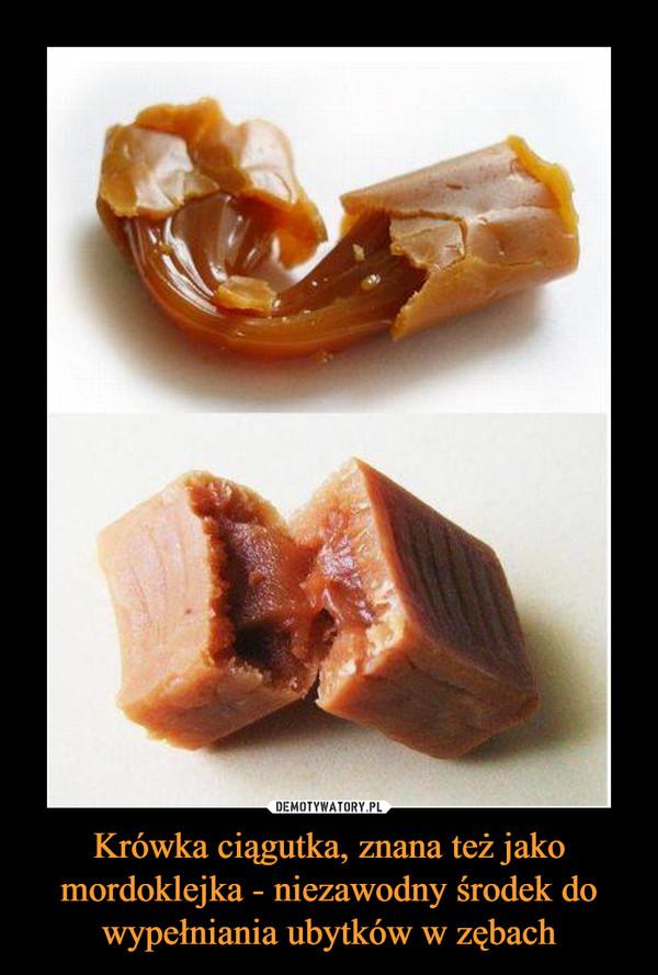 Krówka ciągutka, znana też jako mordoklejka - niezawodny środek do wypełniania ubytków w zębach –