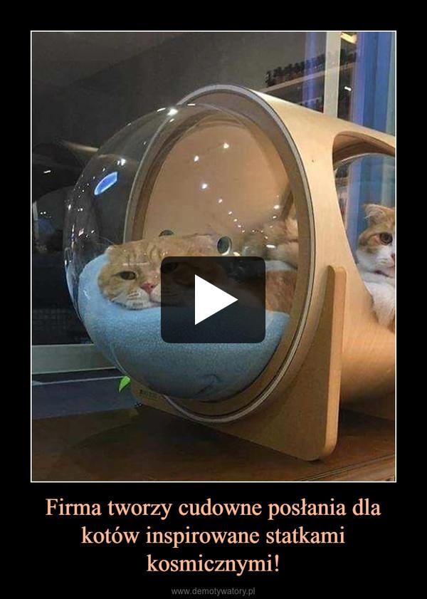 Firma tworzy cudowne posłania dla kotów inspirowane statkami kosmicznymi! –