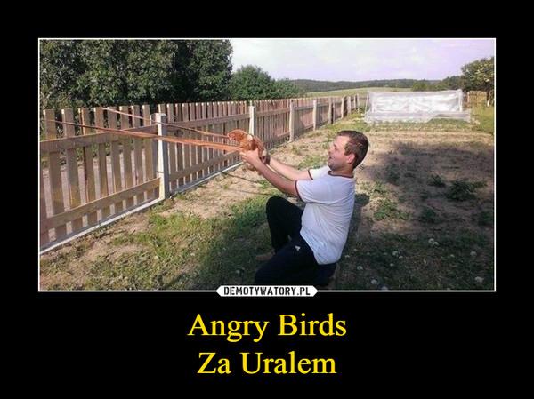 Angry BirdsZa Uralem –