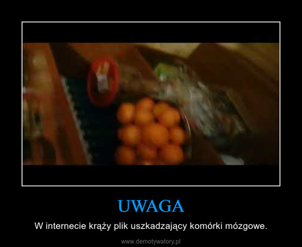UWAGA – W internecie krąży plik uszkadzający komórki mózgowe.