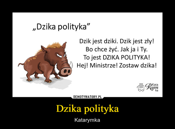 Dzika polityka – Katarymka