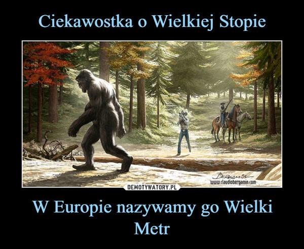 W Europie nazywamy go Wielki Metr –