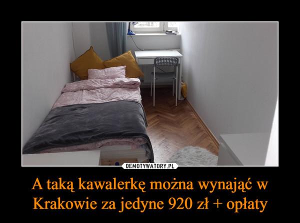 A taką kawalerkę można wynająć w Krakowie za jedyne 920 zł + opłaty –
