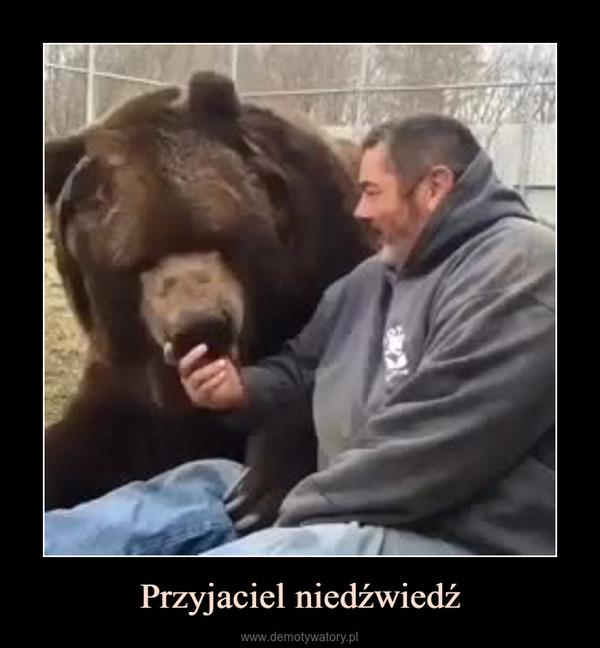 Przyjaciel niedźwiedź –
