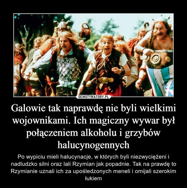 Galowie tak naprawdę nie byli wielkimi wojownikami. Ich magiczny wywar był połączeniem alkoholu i grzybów halucynogennych – Po wypiciu mieli halucynacje, w których byli niezwyciężeni i nadludzko silni oraz lali Rzymian jak popadnie. Tak na prawdę to Rzymianie uznali ich za upośledzonych meneli i omijali szerokim łukiem