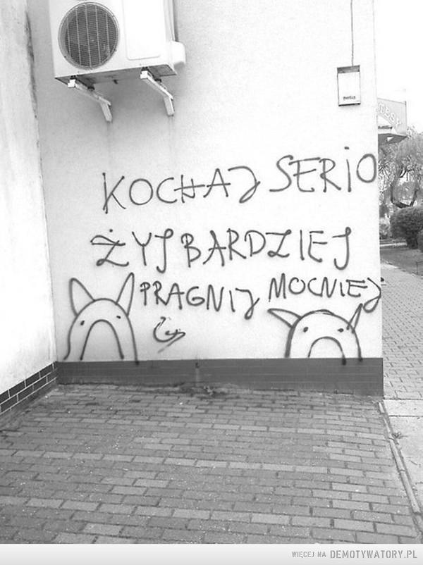 Głos ulicy –