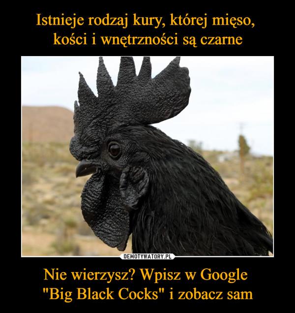 """Nie wierzysz? Wpisz w Google """"Big Black Cocks"""" i zobacz sam –"""