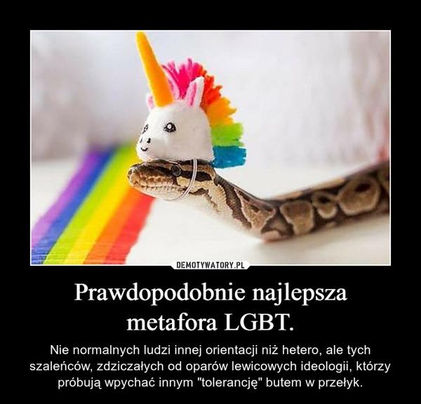 """Prawdopodobnie najlepszametafora LGBT. – Nie normalnych ludzi innej orientacji niż hetero, ale tych szaleńców, zdziczałych od oparów lewicowych ideologii, którzy próbują wpychać innym """"tolerancję"""" butem w przełyk."""