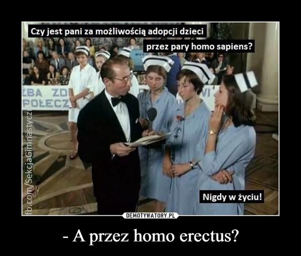 - A przez homo erectus? –