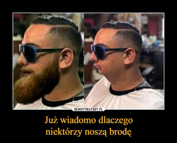 Już wiadomo dlaczegoniektórzy noszą brodę –
