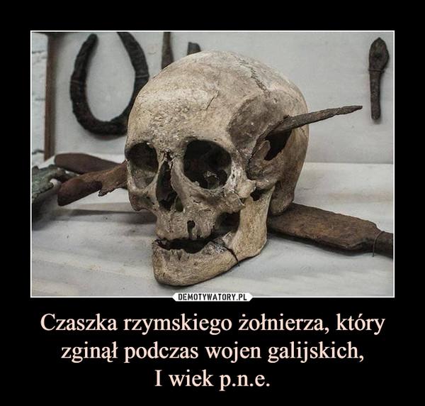 Czaszka rzymskiego żołnierza, który zginął podczas wojen galijskich,I wiek p.n.e. –