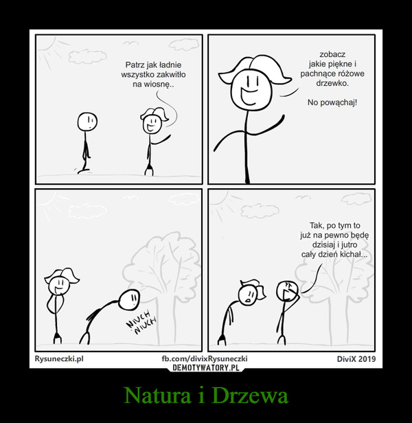 Natura i Drzewa –