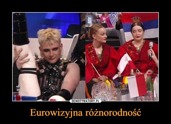 Eurowizyjna różnorodność –
