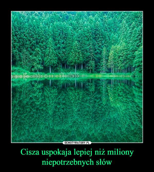 Cisza uspokaja lepiej niż miliony niepotrzebnych słów –