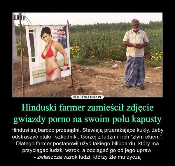 """Hinduski farmer zamieścił zdjęcie gwiazdy porno na swoim polu kapusty – Hindusi są bardzo przesądni. Stawiają przerażające kukły, żeby odstraszyć ptaki i szkodniki. Gorzej z ludźmi i ich """"złym okiem"""". Dlatego farmer postanowił użyć takiego billboardu, który ma przyciągać ludzki wzrok, a odciągać go od jego upraw - zwłaszcza wzrok ludzi, którzy źle mu życzą"""